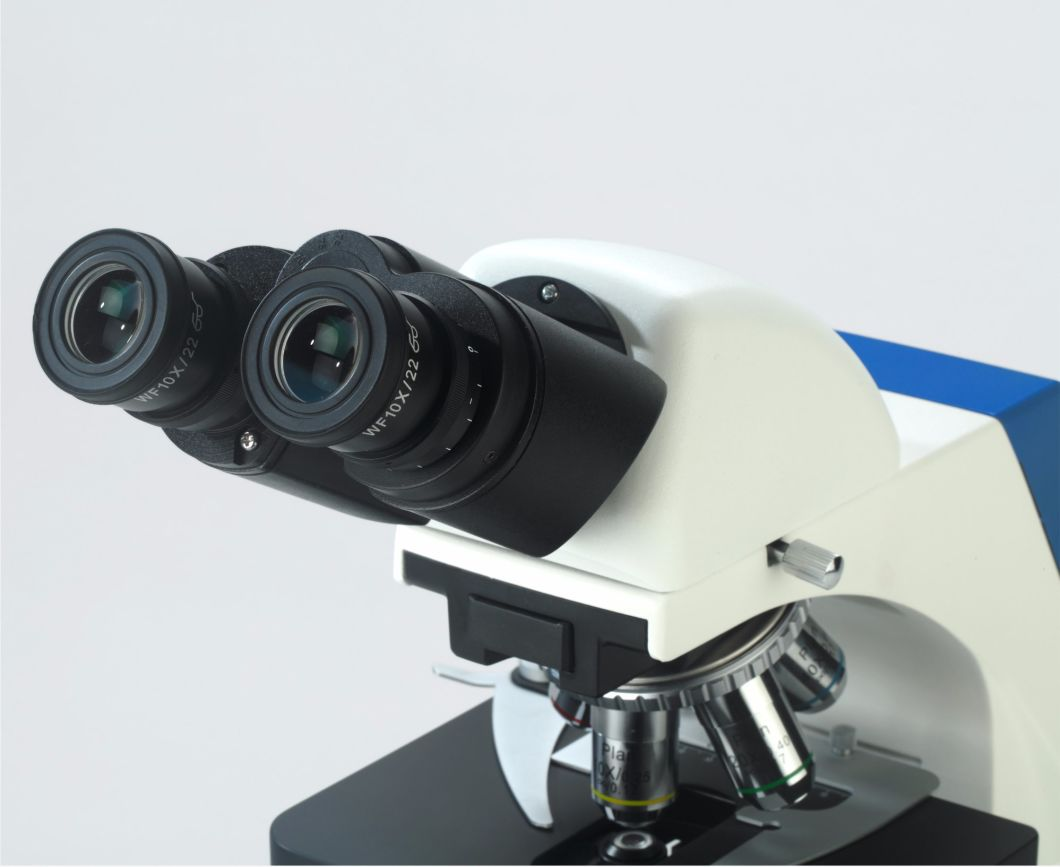 Binocular Compound Microscope for Scientific Research for Sale