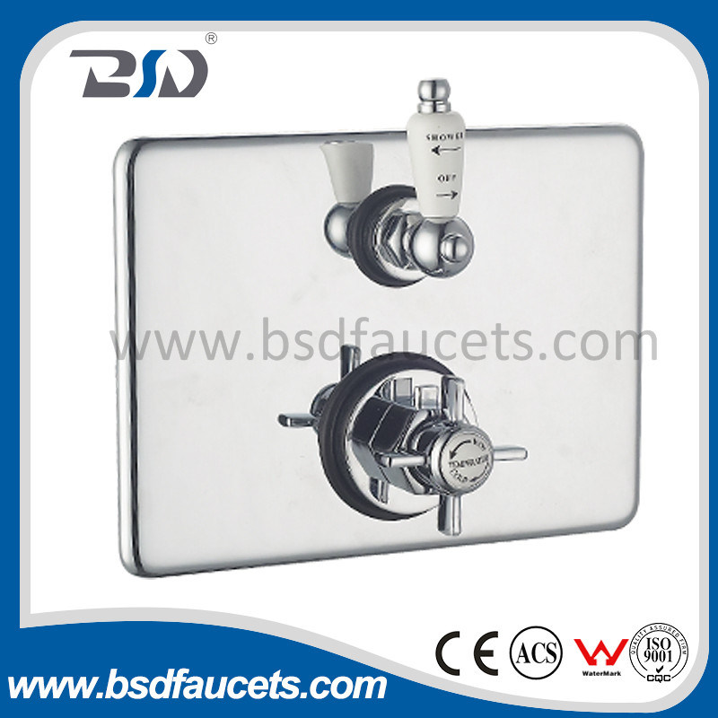 Brass Twin Concealed Exposed Thermostatic Shower Valve with Rectangular Plate