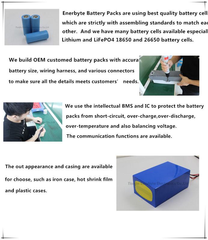 LiFePO4 Battery Pack 24V 20ah