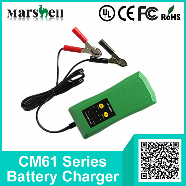Different Current 6V / 12V Output Maintain Battery Charger