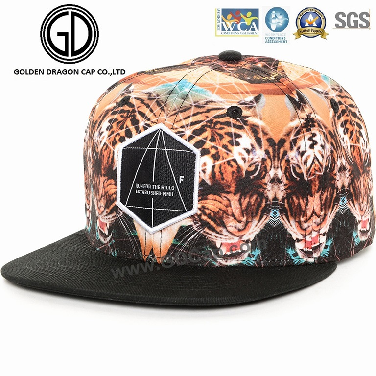 2015 Top Sale Fashion Basketball Snapback Cap with Custom Embroidery