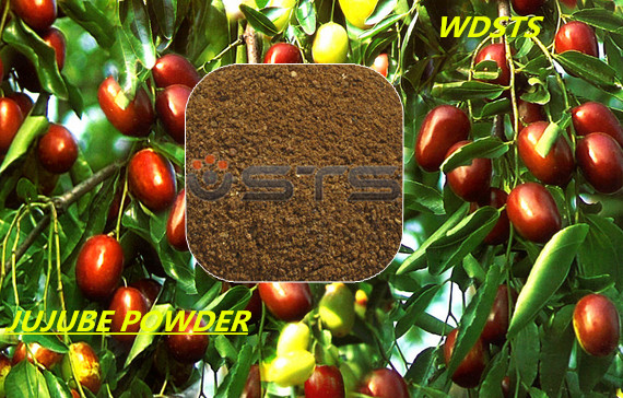 Jujube Powder for Animal Feed (Global sale)
