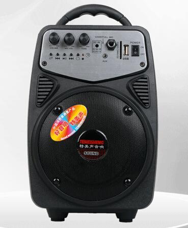 Multiple Color Mini Active Speaker with Bluetooth, FM Radio, Remote Q2