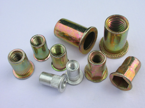 All Size Stainless Steel 304 Zinc Plating Rivet Nut