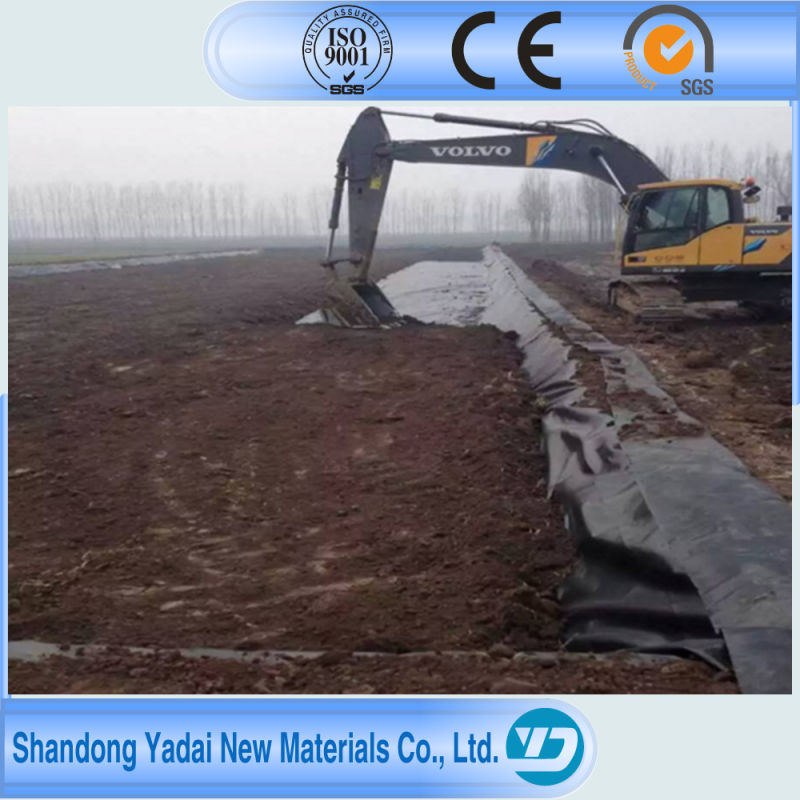 HDPE Geomembrane for Artificial Lake Pond Liner
