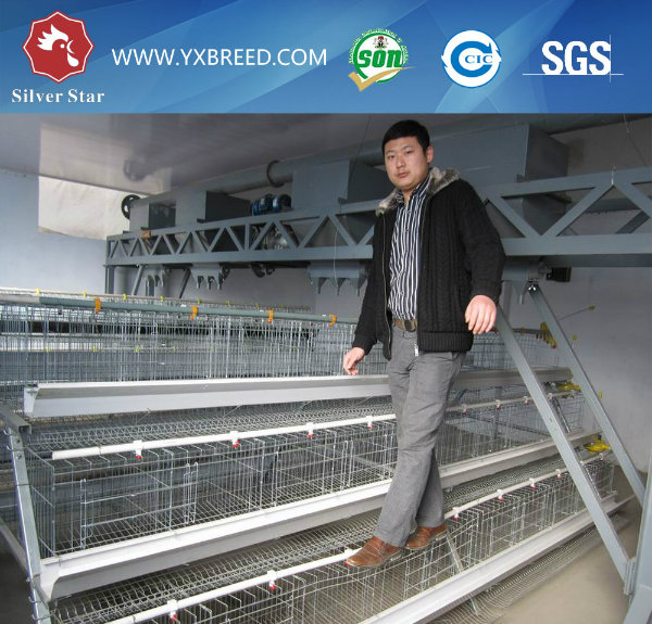 Battery Chicken Cage for Hen Farm
