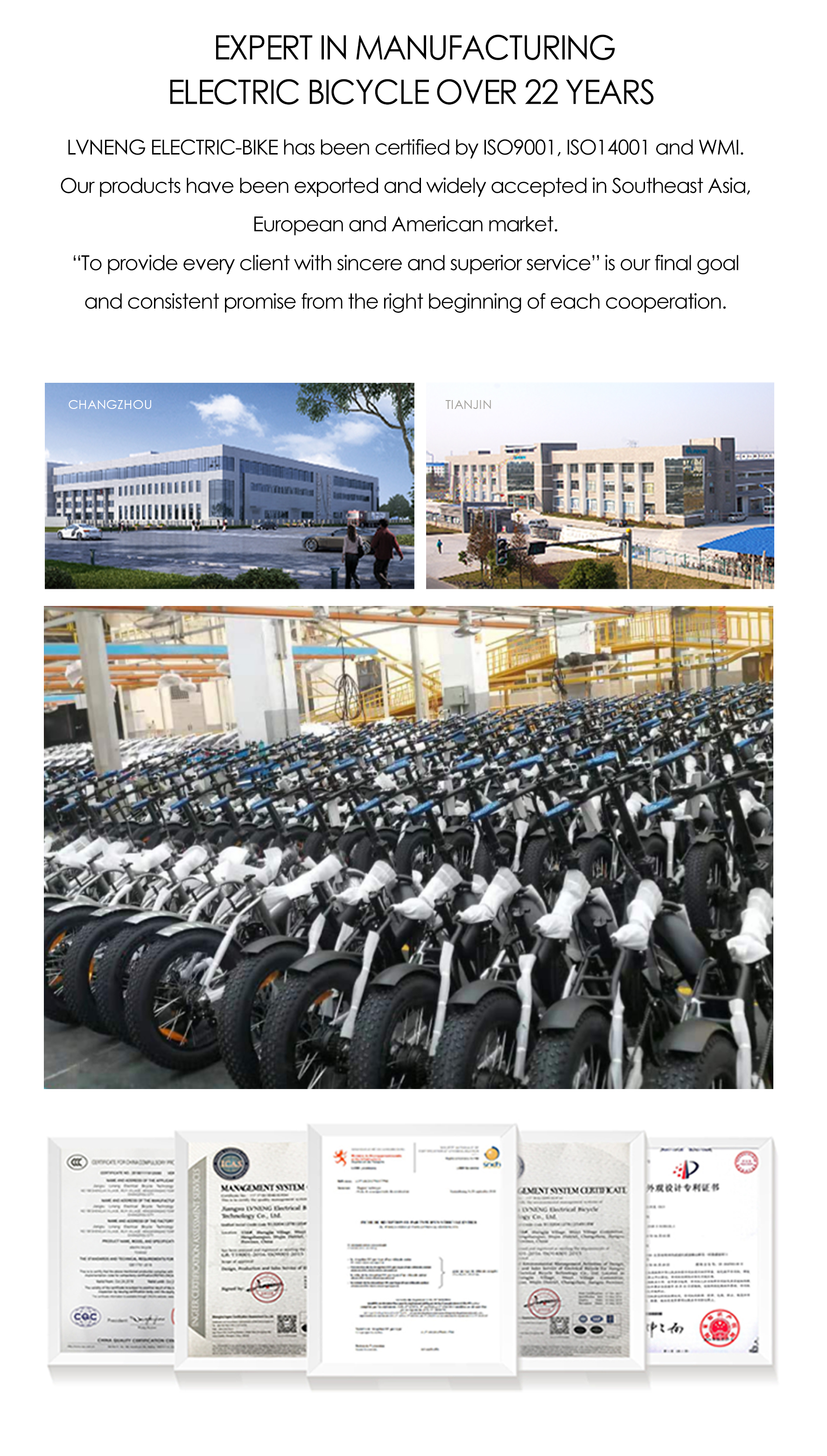economical price fat tyre electrical Bicycle
