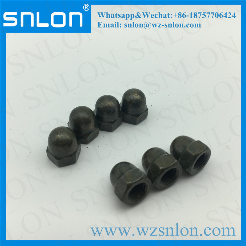 Bolt & Screw Combination Cap Nut