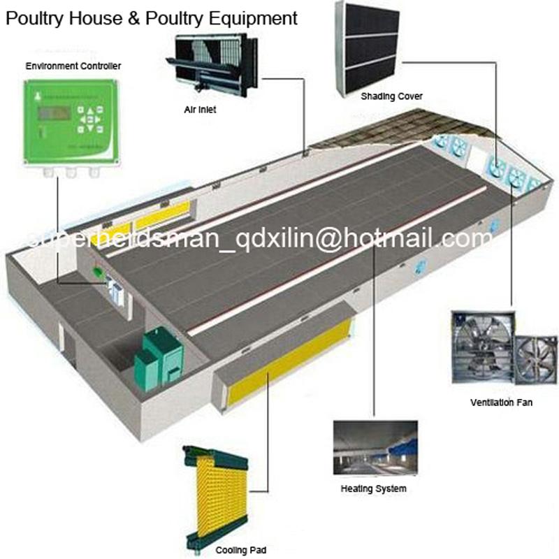 Full Set Poultry House Equipments for Broiler House