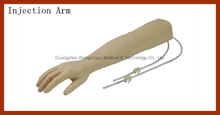 Advanced Elder Venipuncture Training Arm Model, Elder Injection Arm