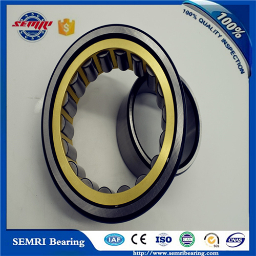 Tfn Cylindrical Roller Bearing for Gas Turbines (512533)