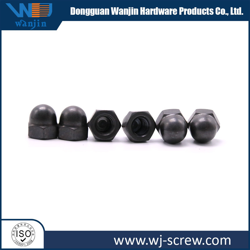 China Made Black Round Head Hexagonal Stainless Steel Screw Nut