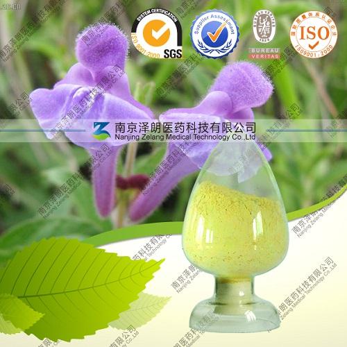 Wholesale 98% Baicalein Baikal Skullcap Root Extract