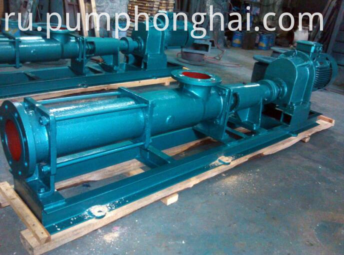 Single Helical Pump cast iron