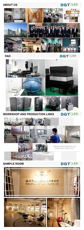 5W-35W COB LED Down Light Downlight with 3 Years Warranty (MQ-7395)