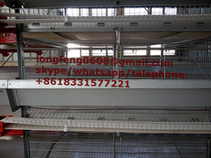 Automatic a Type of Pullet Cage