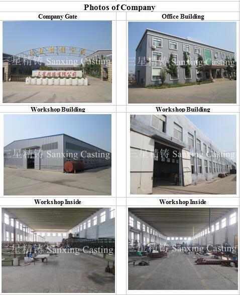 Tractor/Crane/Elevator/Fork Lilft/Truck/Machinery Casting Part