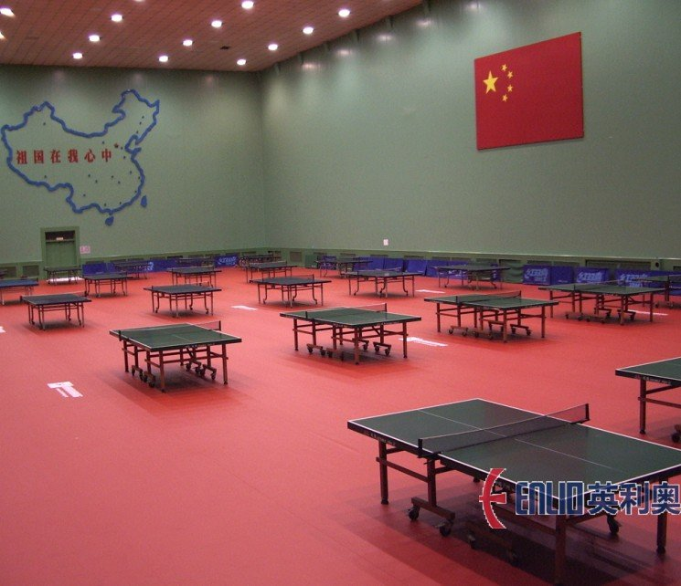 enlio table tennis floors
