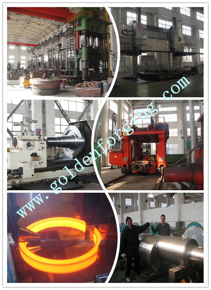 SAE1045 Forging Steel Shaft with Machined Size