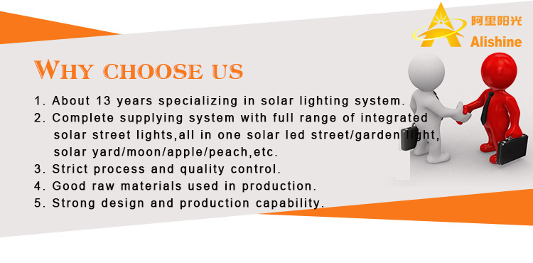 30W Outdoor Garden Lamp Products LED Lighting Solar Street Light