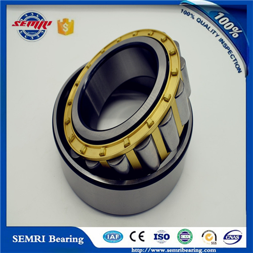 P6 Cylindrical Roller Bearing (NJ217) Made in China Bearing Factory