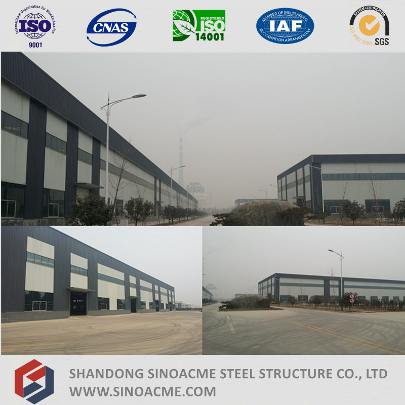 Heavy Steel Frame Shed for Workshop with Overhead Crane