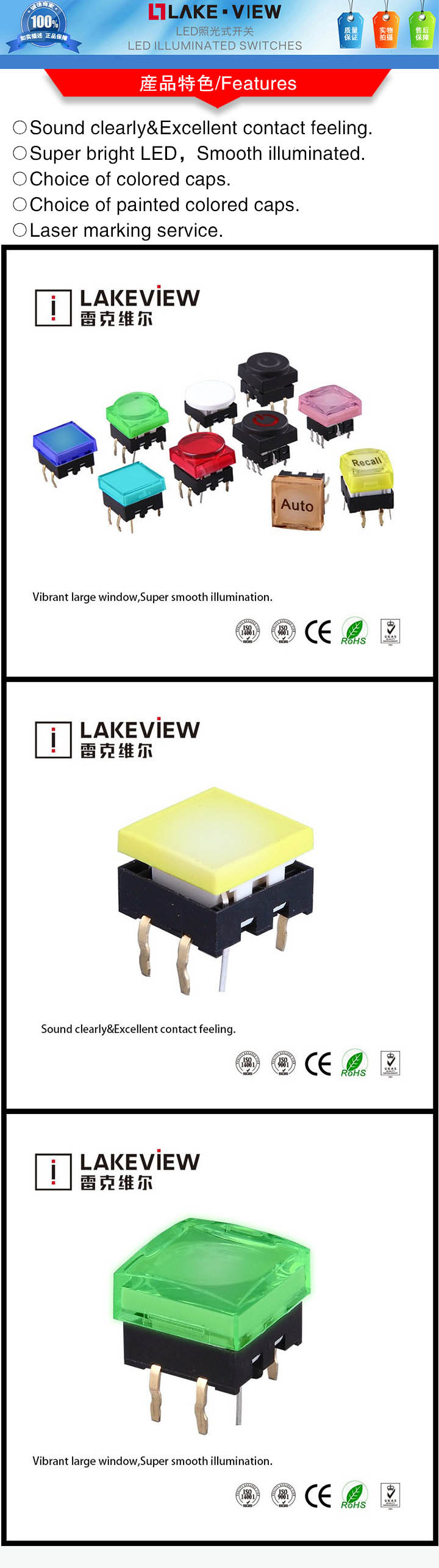 Factory Electric Tactile Illuminated Switch with LED