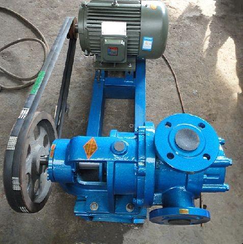 Belt Driven Rotor Pump S