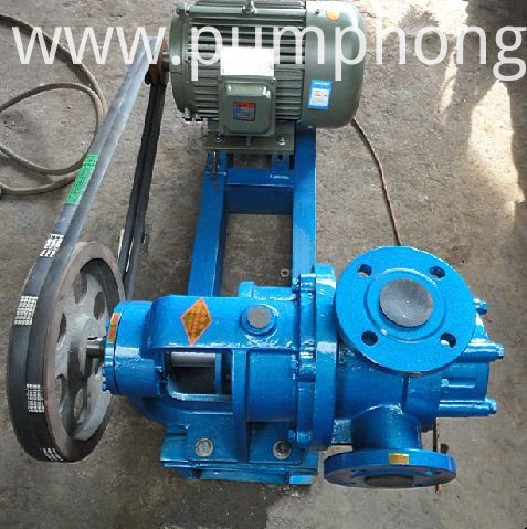 NYP cast iron material rotor pump
