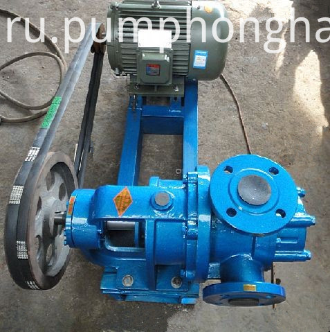 Stainless Steel 304 Cast Iron High Viscosity Honey Pump