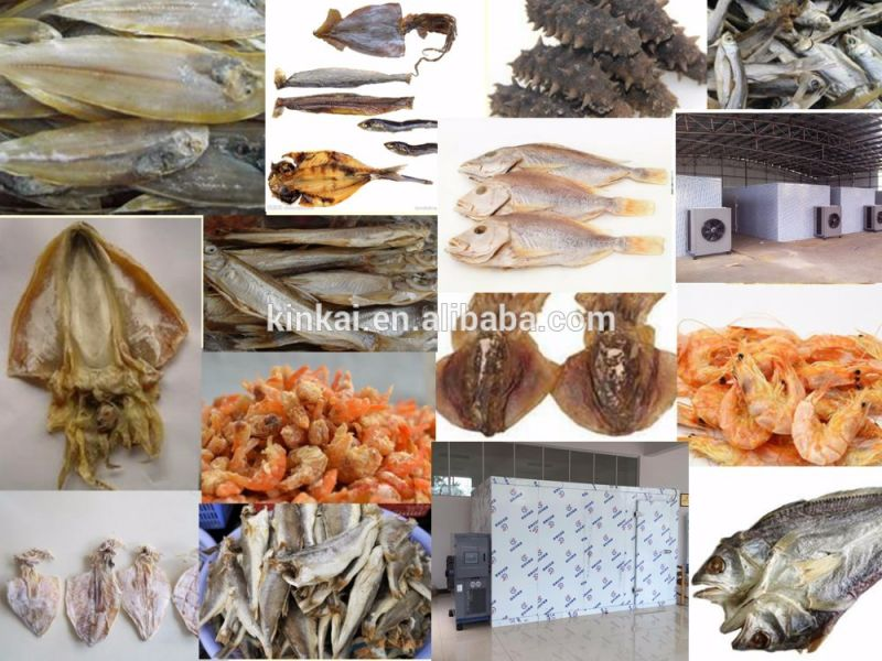 Cold Wind Circle Seafood Drying Machine, Sea Cucumber Drier