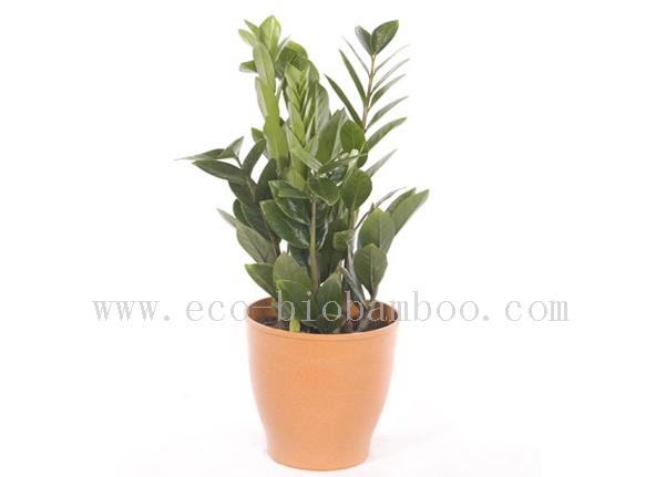 Bamboo Fiber Flower Pot (BC-F1002)