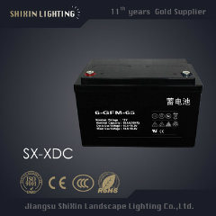 IP65 30W Hot Sale Solar Wind LED Street Lights (SX-TYN-LD-66)