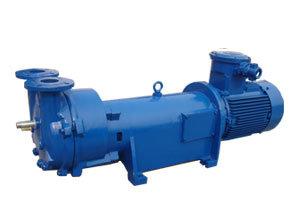 2BV Series Liquid Ring Vacuum Pump for CNC Router