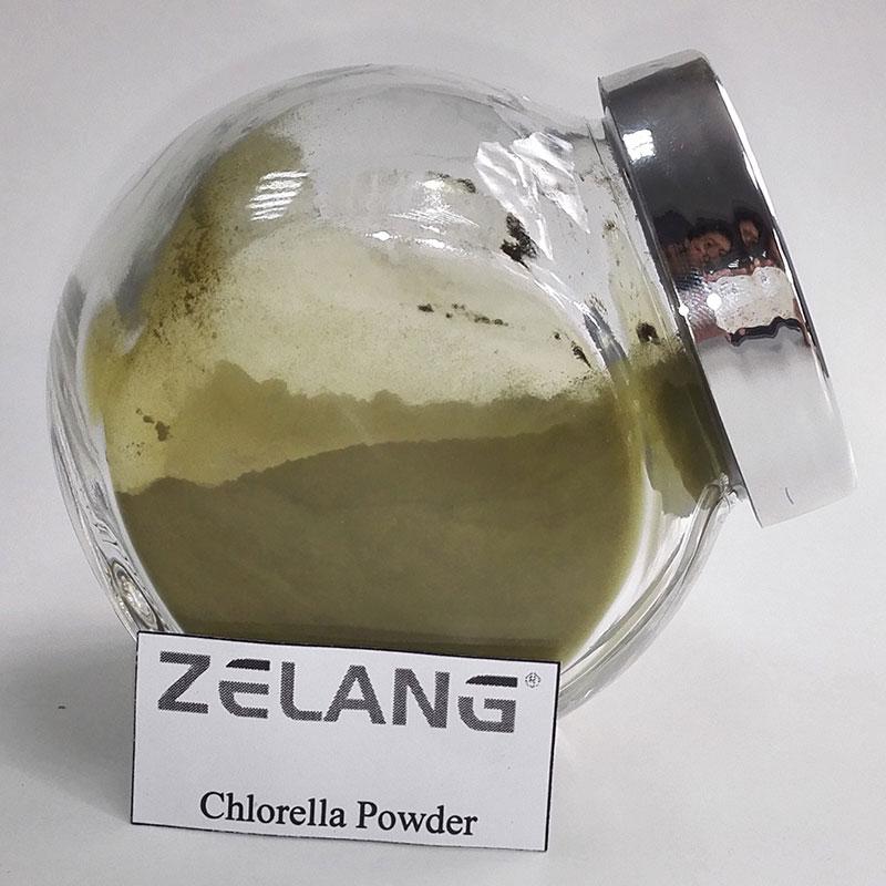 Organic Chlorella Benefits Source Naturals Chlorella