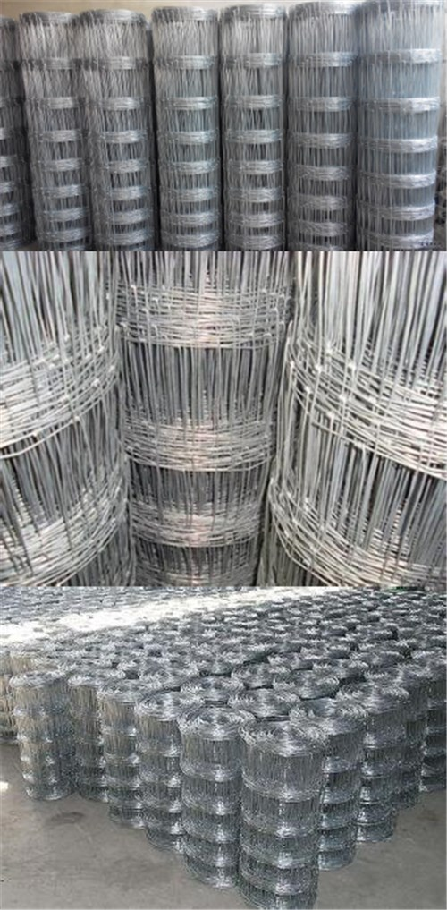 Galvanized Knotted Wire Mesh Fence Field Mesh
