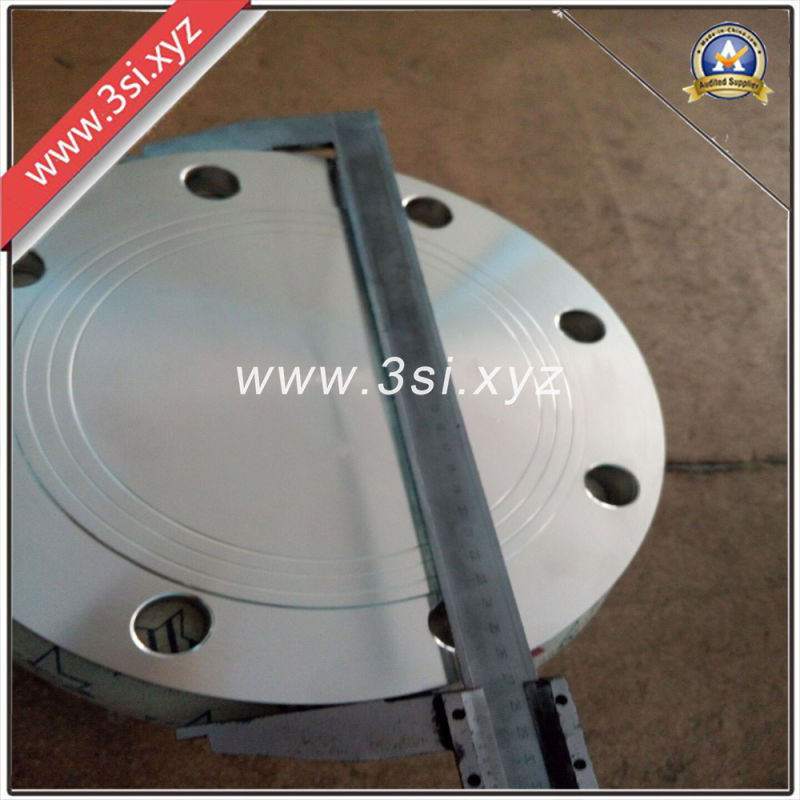 Standard Stainless Steel 316 Forged Blind Flange (YZF-E393)