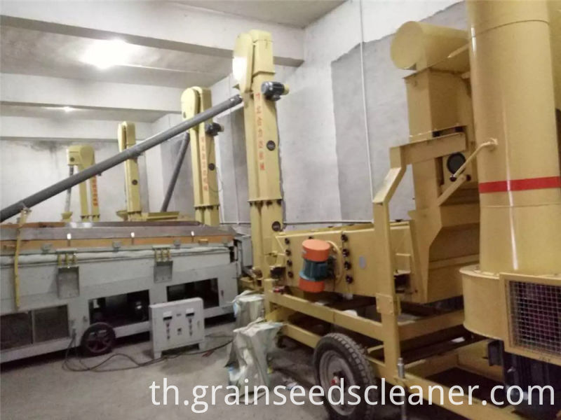 Mung cleaning plant