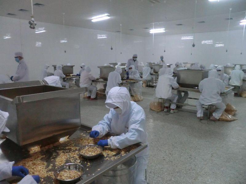 2016 Garlic Powder From Factory with Brc, Gap, HACCP& Kosher