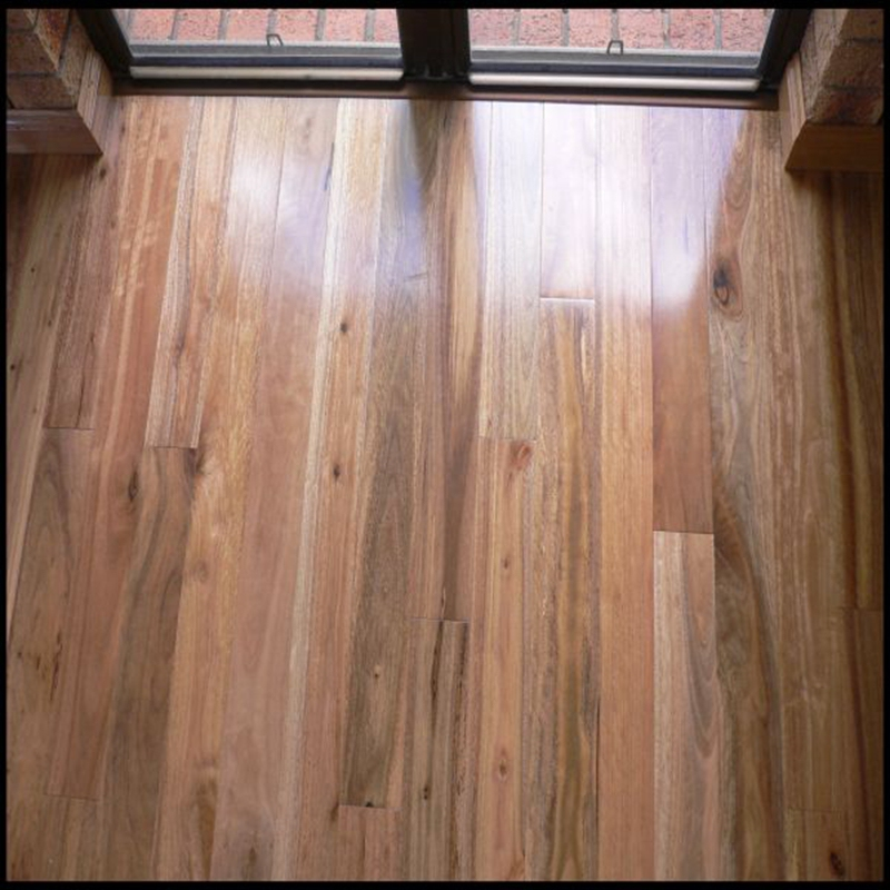 Prime Solid Spotted Gum Wood Flooring