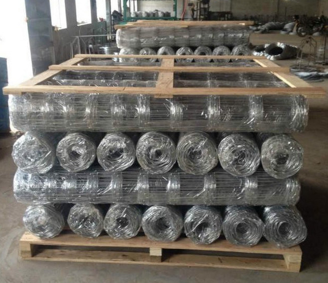 Welded Wire Mesh Fence Used Fencing for Cattle Fence