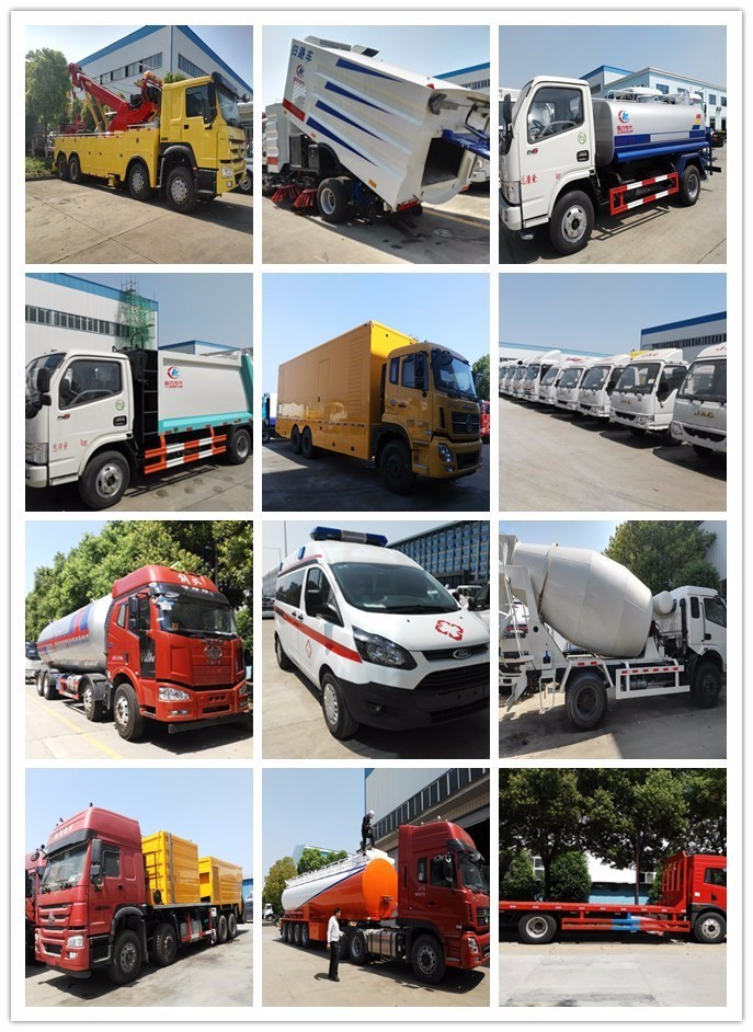 Truck Mounted Crane Truck Crane 8*4 China Mobile Truck with Crane