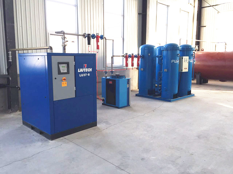 Psa Nitrogen Generator for Food Packing