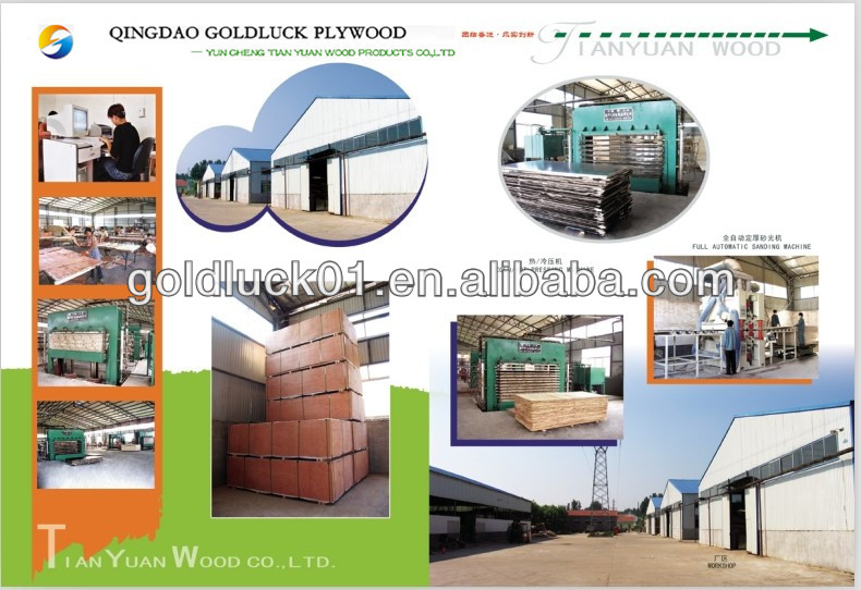 Film Faced Construction Plywood Shandong Manufacture Filmfacedplywood