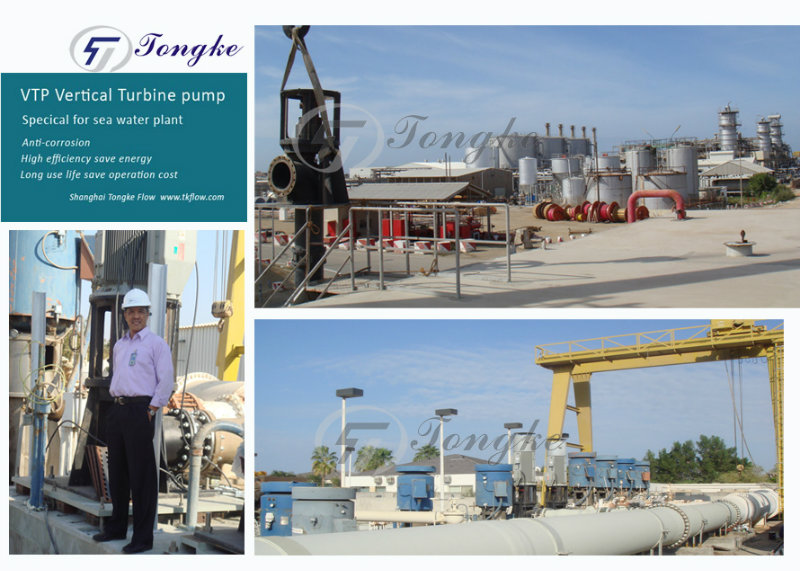 Vertical Turbine Pump for Sea Water, Vertical Line Pump