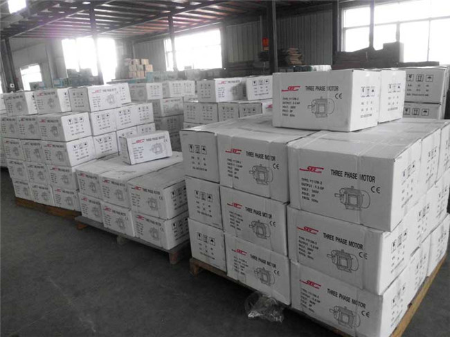 Y Series, 1HP-20HP, Three-Phase, Cast Iron Frame, AC Electric Motor