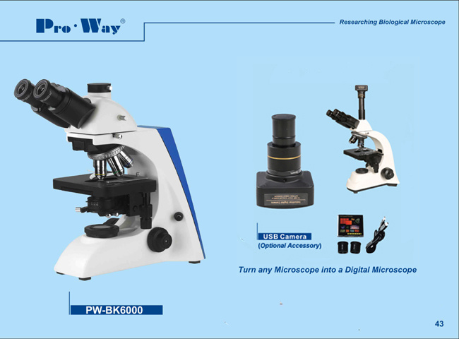 Researching LED Seidentopf Trinocular Biological Microscope and Upgrade Available (PW-BK6000)
