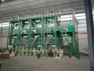 Small Capacity Wheat/Maize Flour Mill Plant