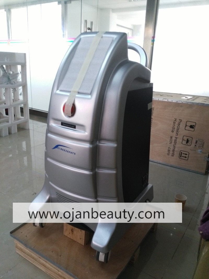 Professional Best Price Cool Technology Body Slimming Weight Loss Cryolipolysis Machine with Ce Certificattion