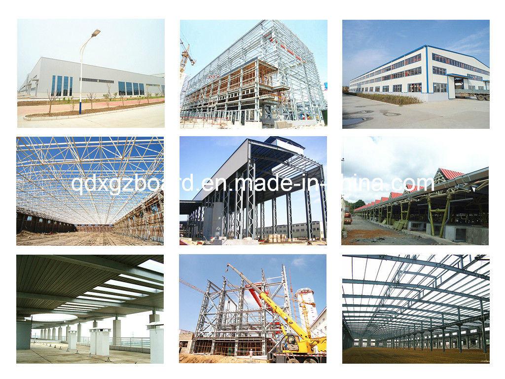 Light Steel Structure Warehouse/Building/Workshop (BYSS015)